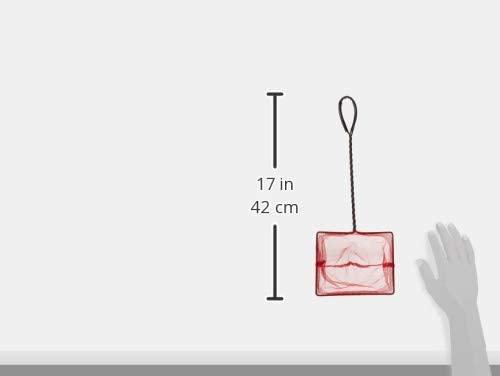 Pen Plax QNR6 product image 6