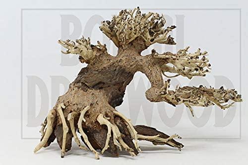 Awawood  product image 9