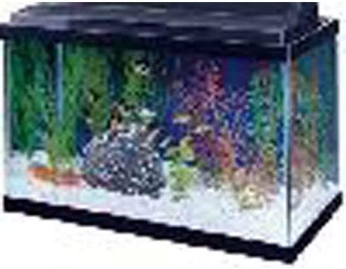 All Glass Aquariums 15905100151 product image 8