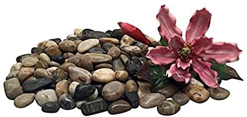 Shindel  product image 8