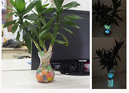 shun yi  product image 7