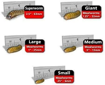 Predator Foods  product image 10