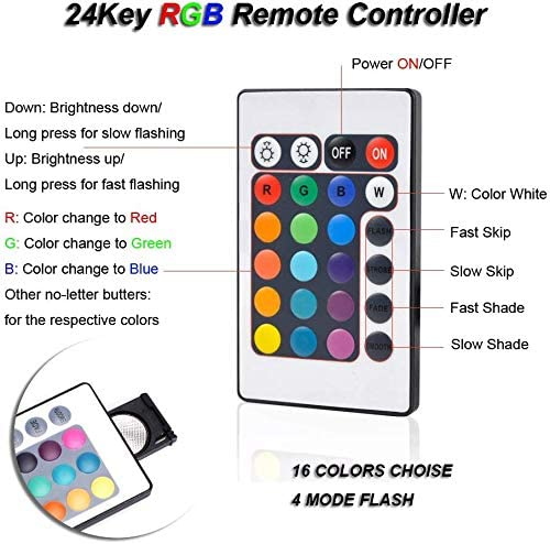 COLOR TREE  product image 4
