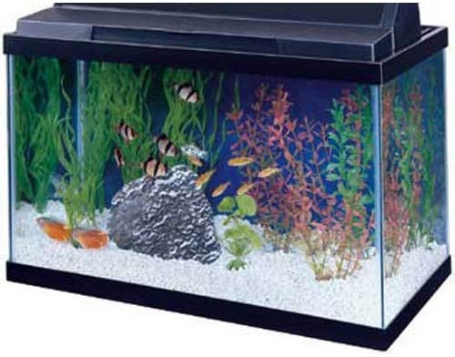 All Glass Aquariums 15905100151 product image 10