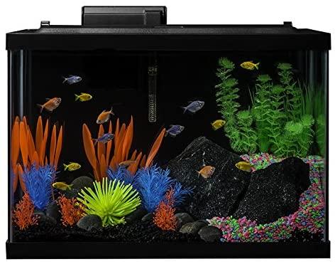 GloFish NV33823 product image 3