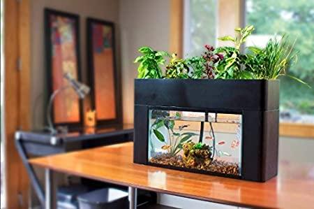 AquaSprouts AquaSprouts Garden product image 2