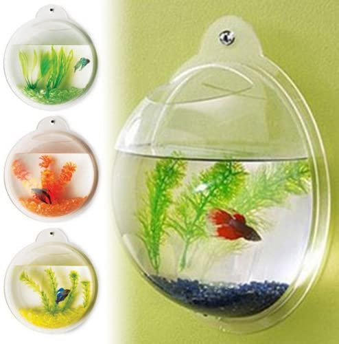 Fish Bubble FISHBUBBLE-WO product image 11