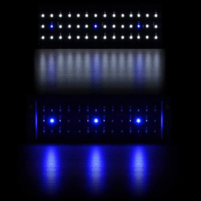 Honpal  product image 3