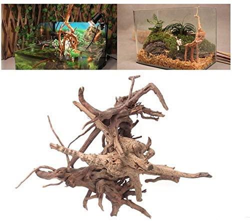 Hamiledyi  product image 5