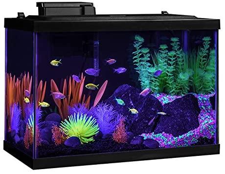 GloFish NV33823 product image 1