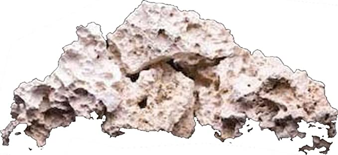 Carib Sea 008479003706 product image 1