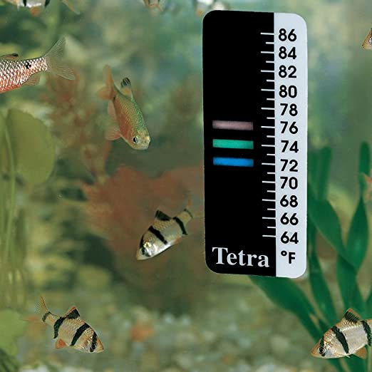 Carolina Biological Supply Company  product image 6
