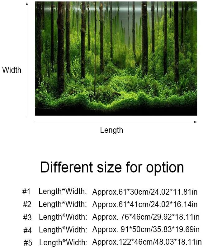 Fdit  product image 10