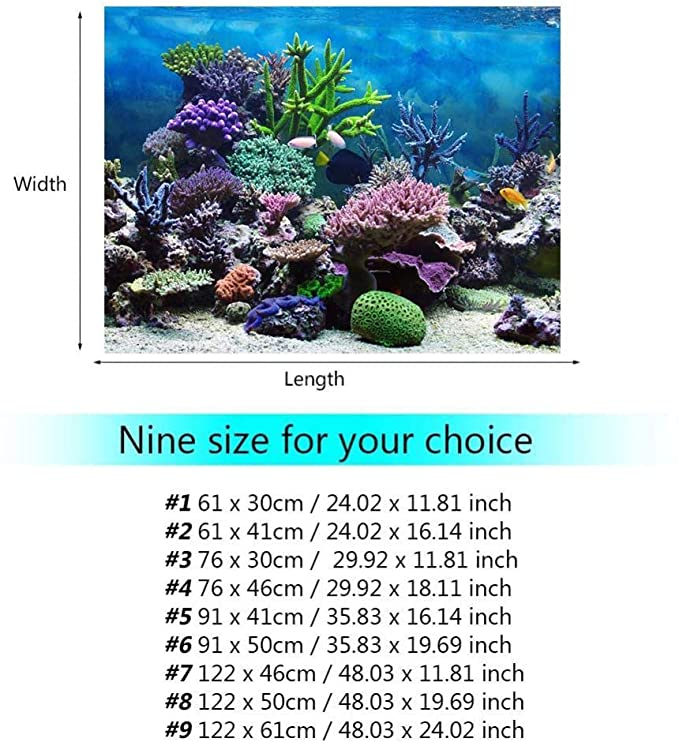 Fdit Fditdxrpghq397-04 product image 8