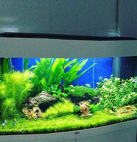 Greenpro 3xB063 product image 9
