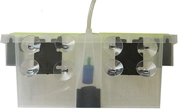 Biolife  product image 9