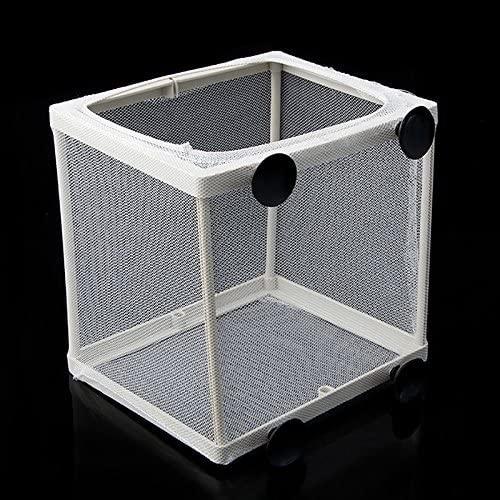 Hikig  product image 5