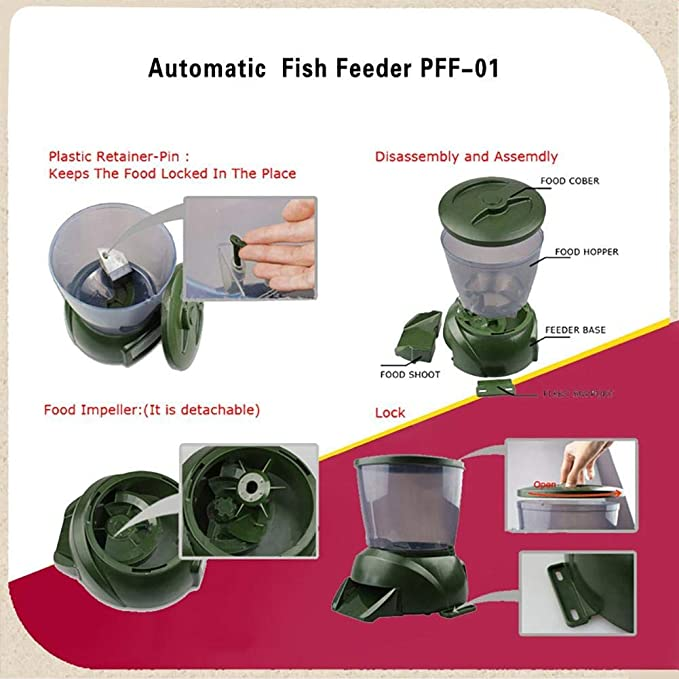 FOOL  product image 10