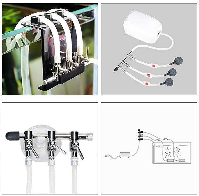 BornFeel  product image 5