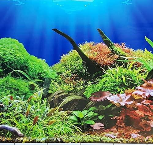 Karen Low  product image 6