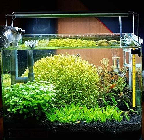Planterest  product image 9