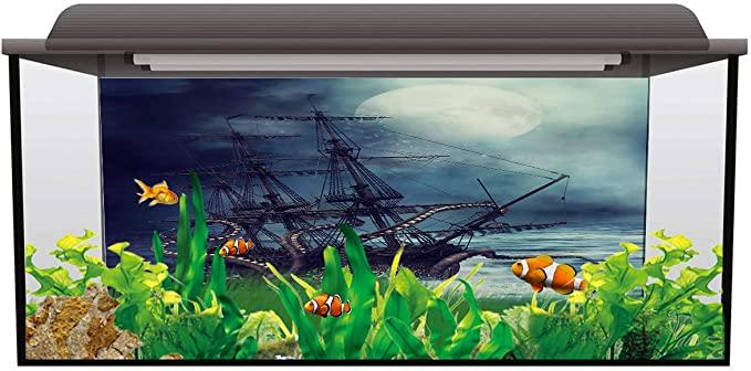 Fantasy Star 20190325huzhiyuanFRSLEX01692YGAKFSR product image 9