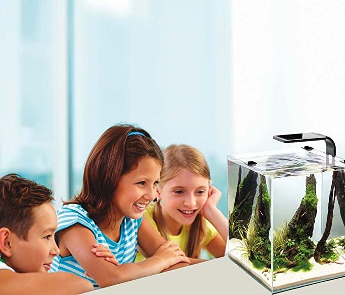 Cobalt Aquatics 14011 product image 6