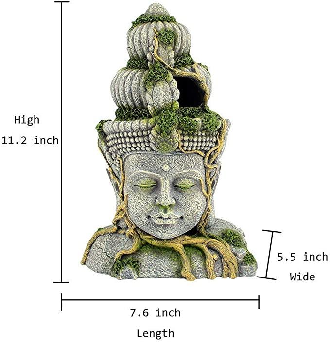 Sunyiny  product image 2