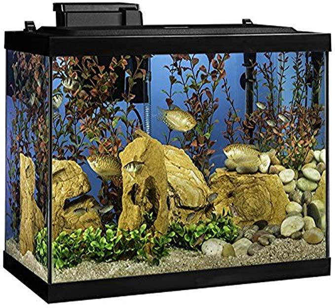 Tetra NV33821 product image 5