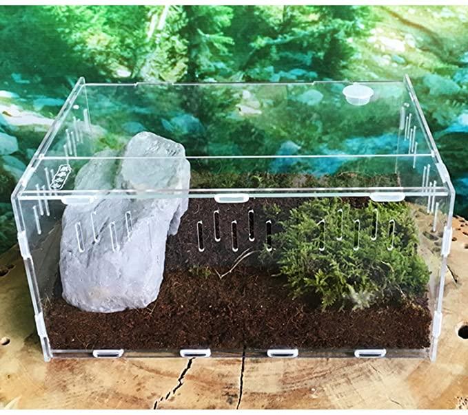 Petforu  product image 3