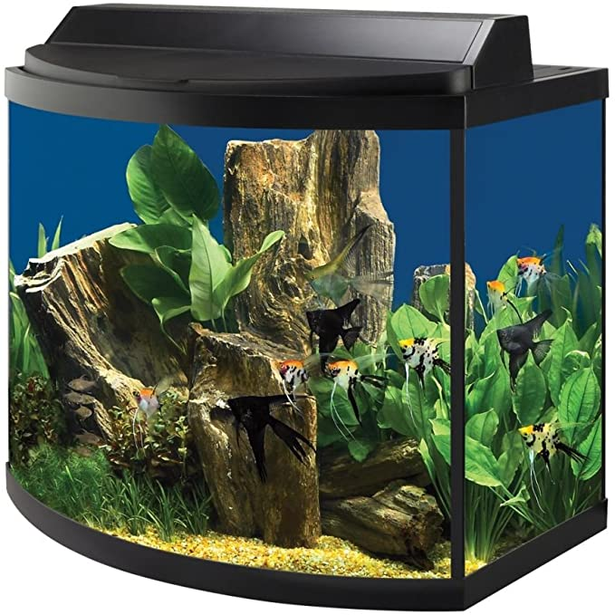 All Glass Aquariums 15905217828 product image 5
