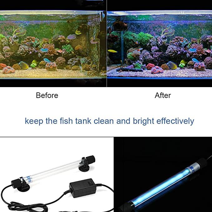 Galapara  product image 10