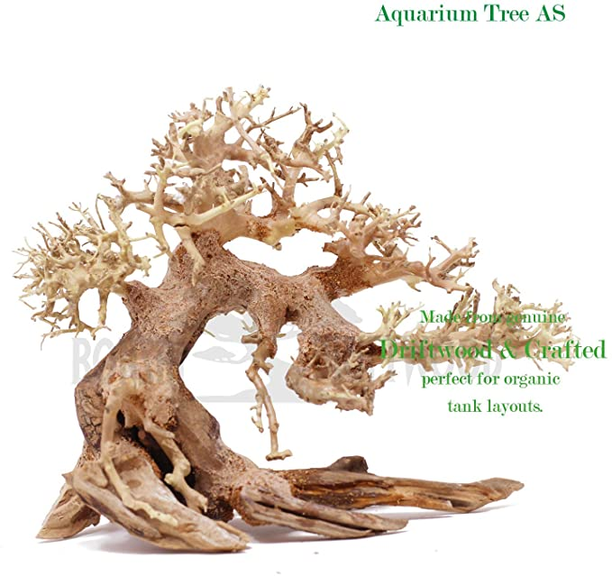 Bonsai Driftwood  product image 4