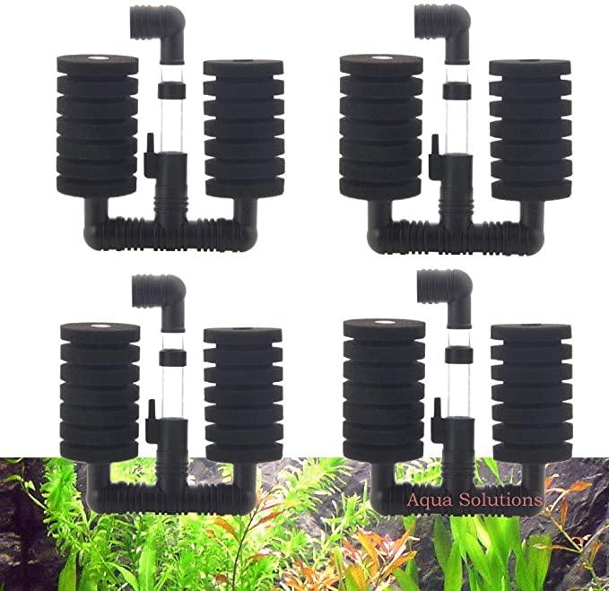 Aquapapa  product image 5