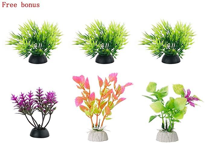FEDOUR  product image 6