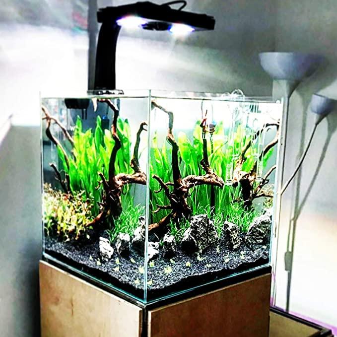 Planterest B082 product image 3