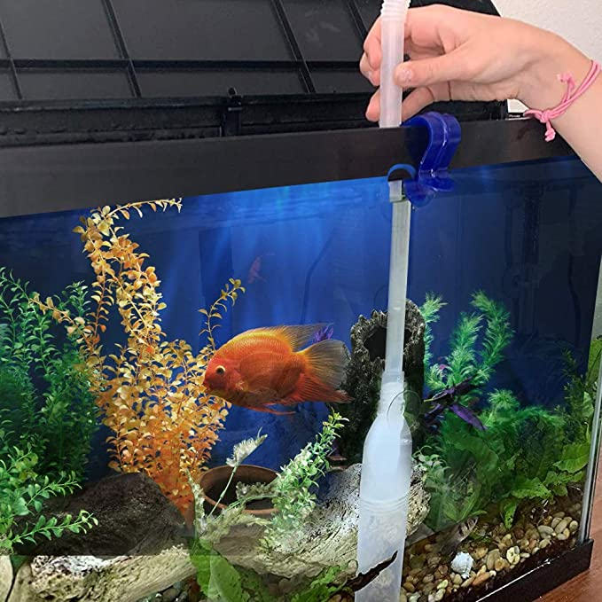 Friendly Fish Company  product image 10
