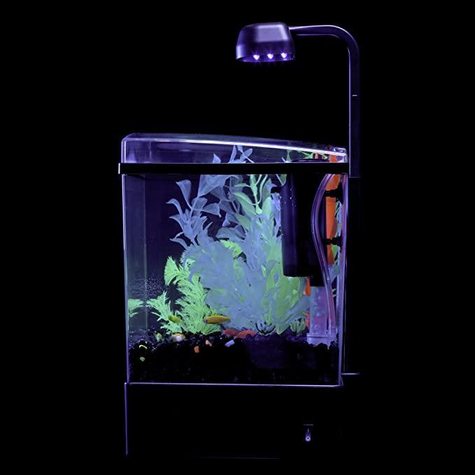 GloFish 29236 product image 10