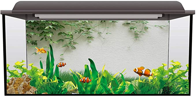 T&H XHome FISHART200217WSJiaoSSTW03379YGAATHH product image 4