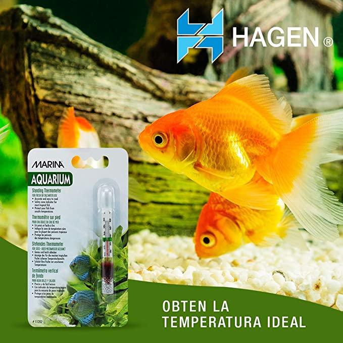 Marina 11202 product image 9