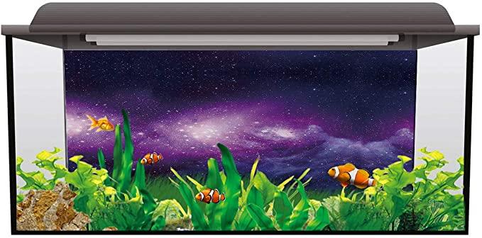 Fantasy Star 20190404huzhiyuanFRSLXM00879YGAAFSR product image 6