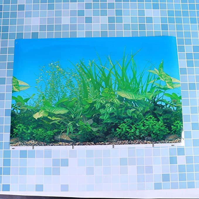 Balacoo T69035DGL332Z5615WO6VW7 product image 11