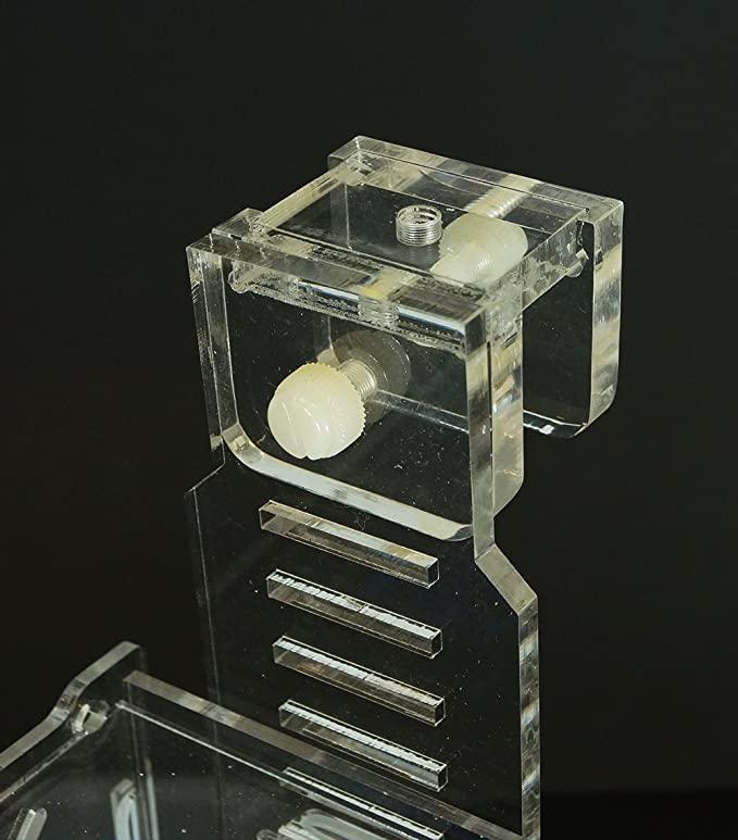 Sea Side Aquatics  product image 4