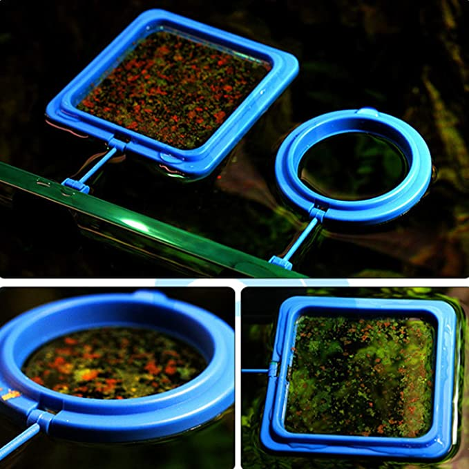 Alfie  product image 5
