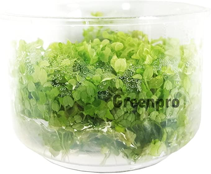 Greenpro L322 product image 9