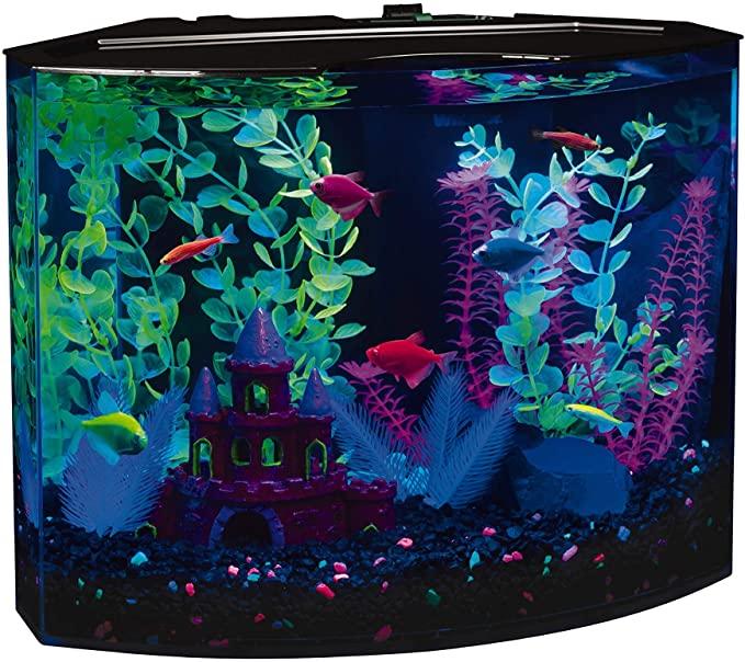GloFish 29045 product image 3