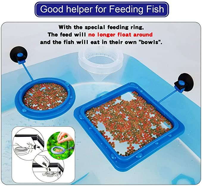 Bluecoco  product image 9