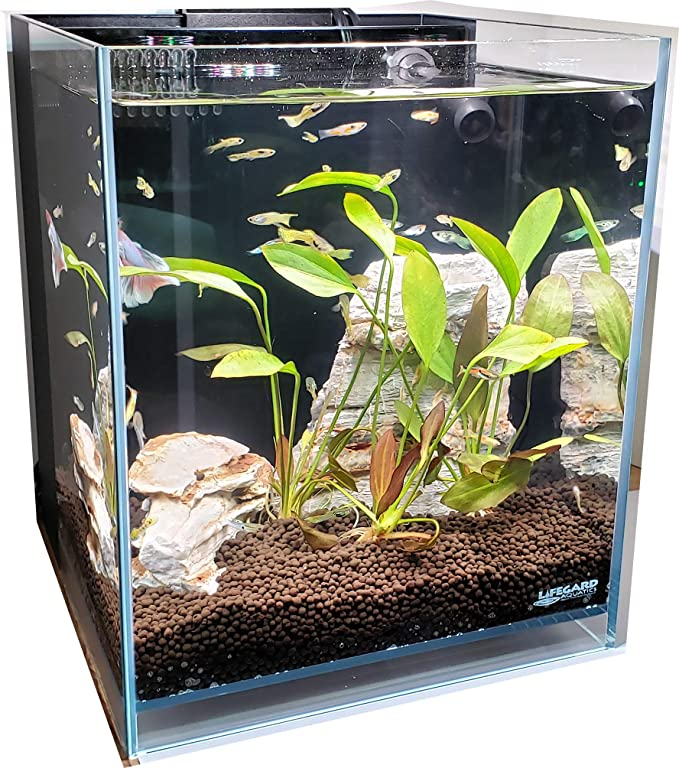 Lifegard R460052 product image 10
