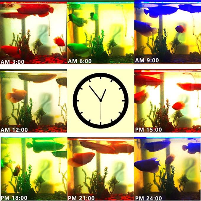 LEDBLE  product image 10