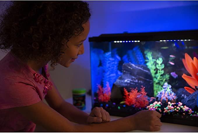 GloFish 29084 product image 4